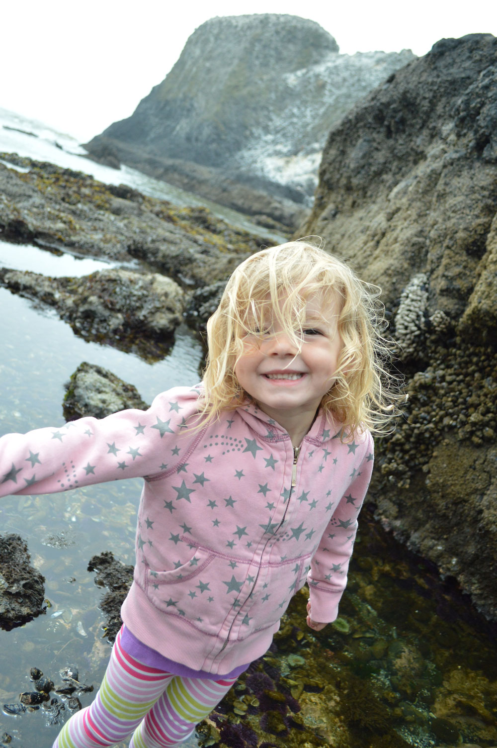 Exploring Oregon coast tide pools with kids - Mommy Scene