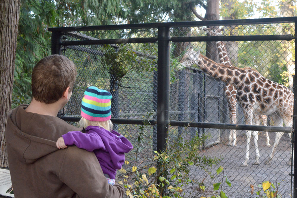 Family Day at the Seattle Woodland Park Zoo watching the giraffes - Mommy Scene