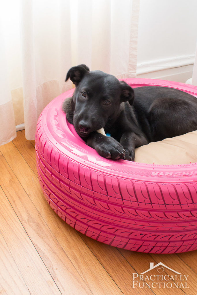 Tire Dog Bed - Creative Uses for Tires