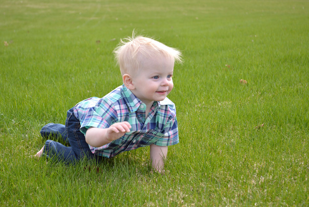 Baby boy crawling through a field - Mommy Scene