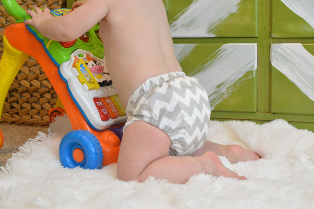 Cute Charlie Banana Cloth Diapers - Mommy Scene