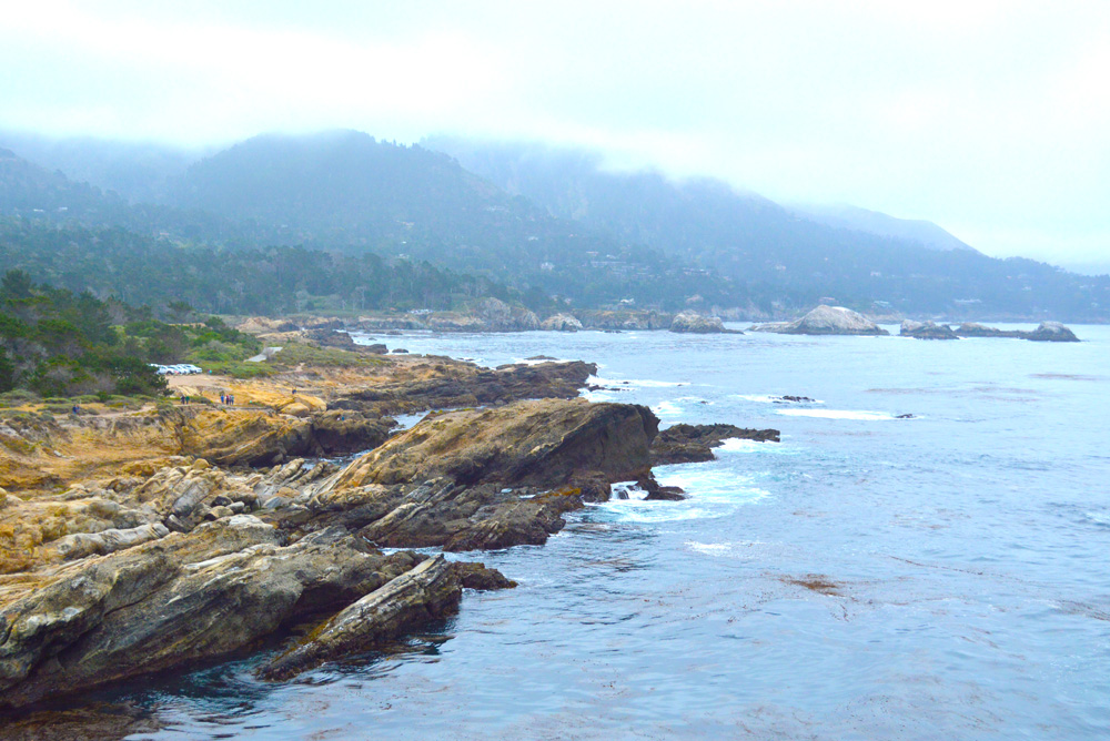 Carmel California Point Lobos State Reserve family visit - Mommy Scene