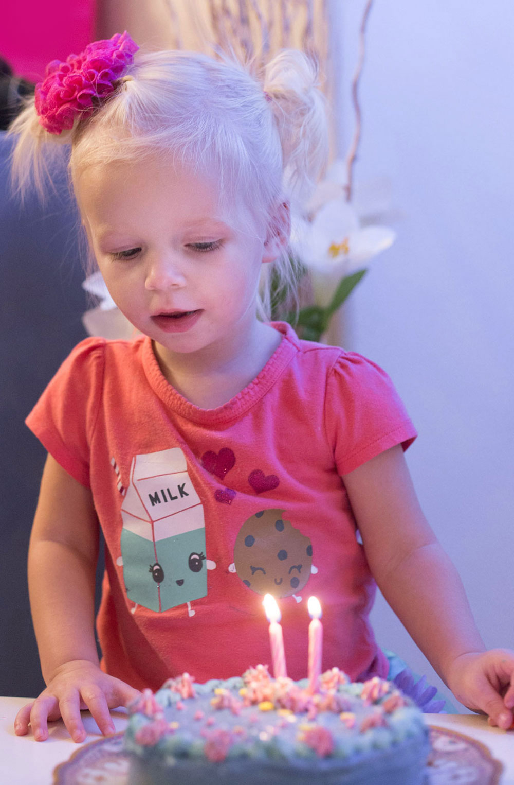 2 year old fairy birthday party - Mommy Scene