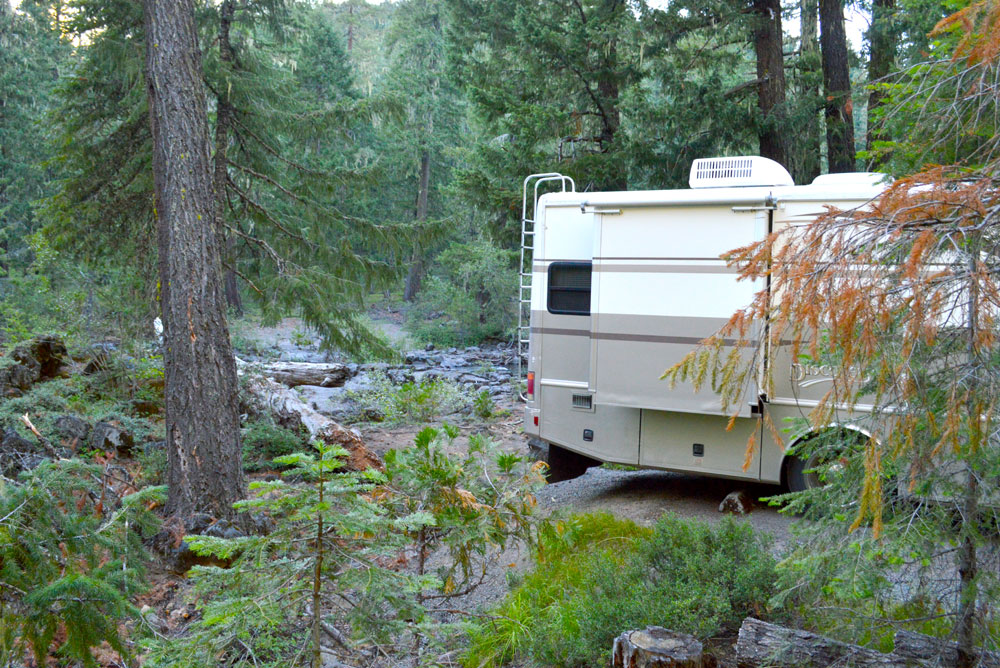 RV Camping in the Oregon woods - Mommy Scene