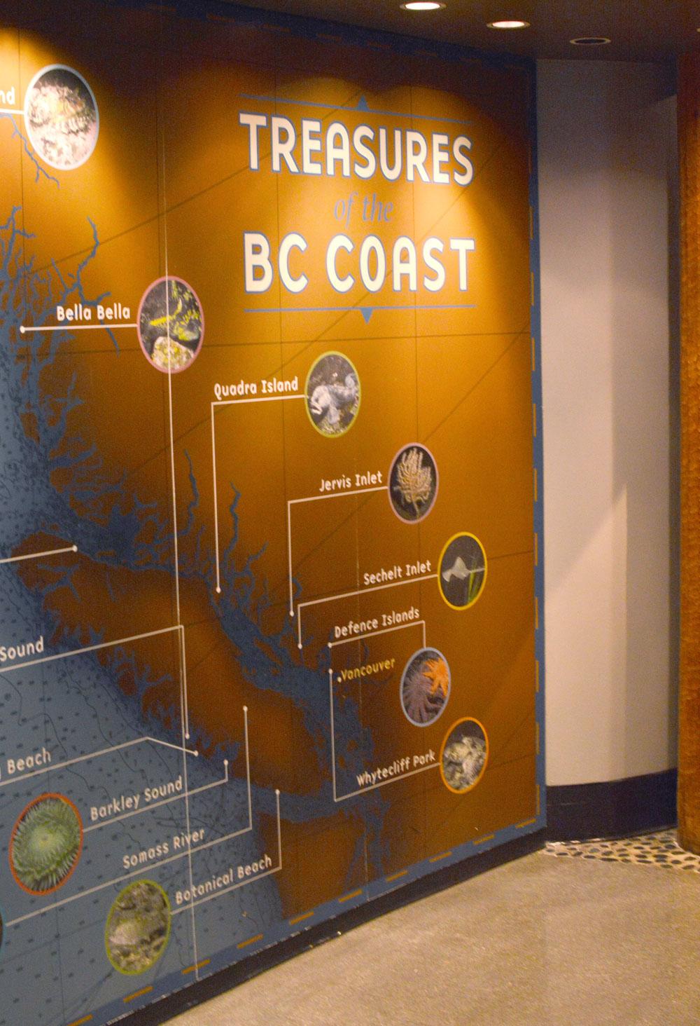 Vancouver Aquarium Treasures of the BC Coast - Mommy Scene