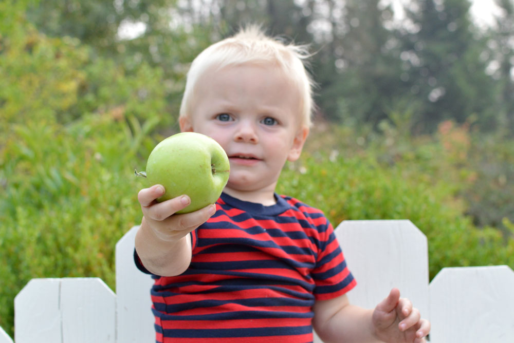 Baby boy holding an apple - Mommy Scene