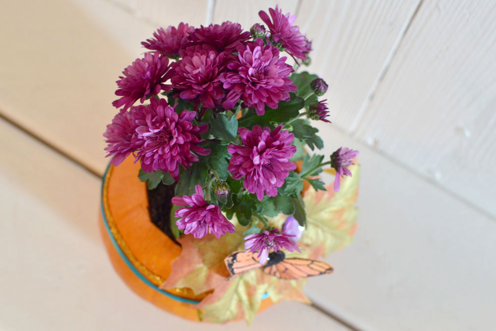 Beautiful Pumpkin flower pot - Mommy Scene