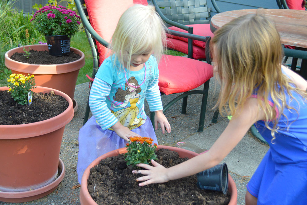 Planting for fall kids activity - Mommy Scene