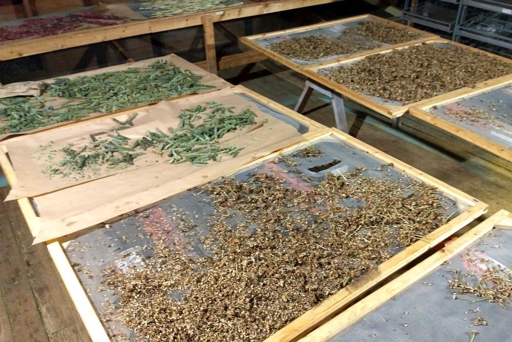 Moon Valley Organics farm dried herbs - Mommy Scene