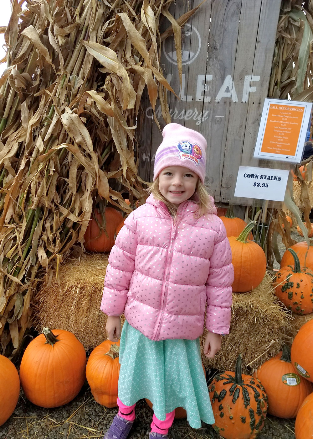 Family Activities at New Leaf Nursery Fall Festival Coeur d'Alene - Mommy Scene