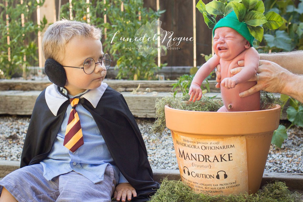 Toddler Harry Potter and Baby Mandrake costume