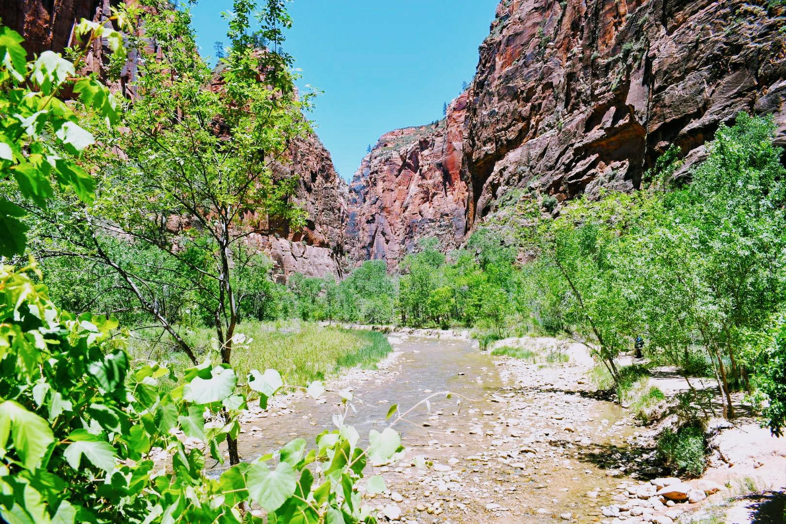 Zion Canyon family adventure hike
