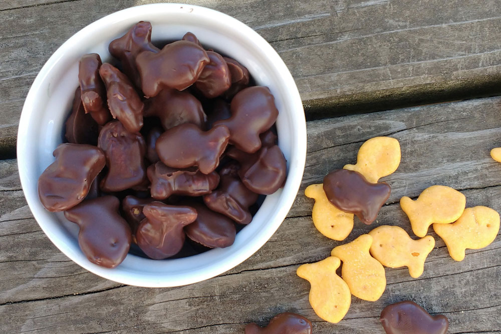 DIY Chocolate Dipped Goldfish