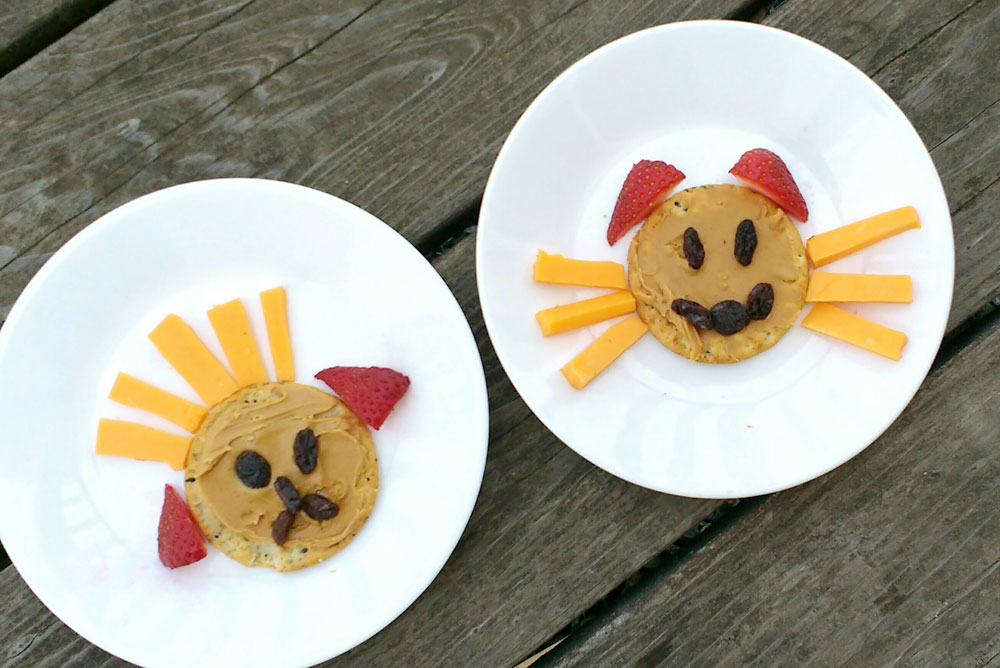 Cute puppy and kitty kids lunches