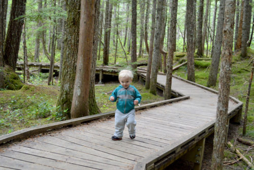 Mount Saint Helens lava tubes boardwalks - Mommy Scene