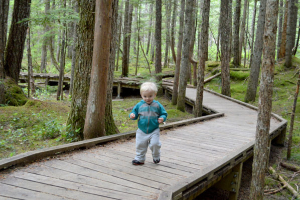 Mount St. Helens Ape Cave & Lava Tubes Family Visit