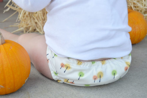 Nuababy cloth diapers and accessories - Mommy Scene