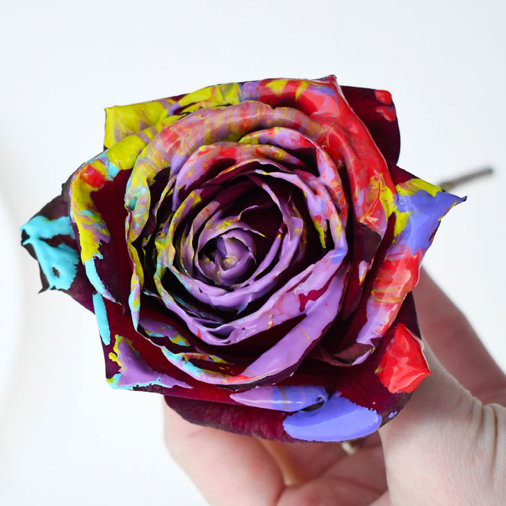 How to Paint with Roses & Make Custom Art