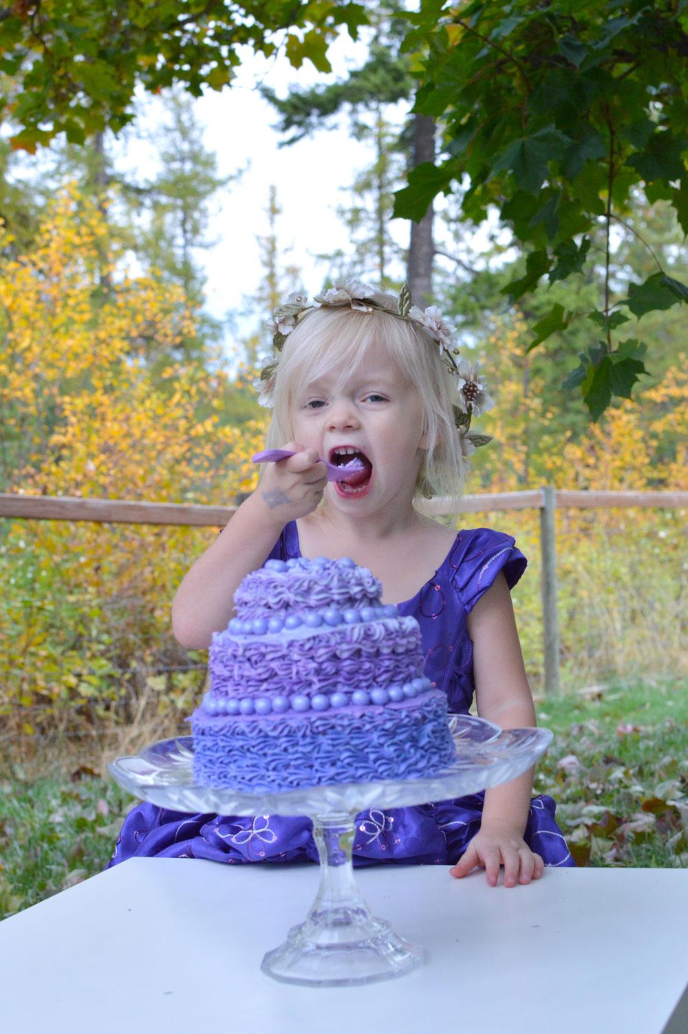 Princess birthday party dress cake smash photos