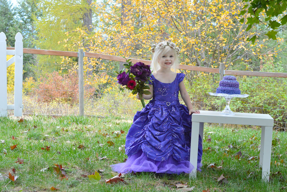 How to Plan A Princess Birthday Party on a Budget