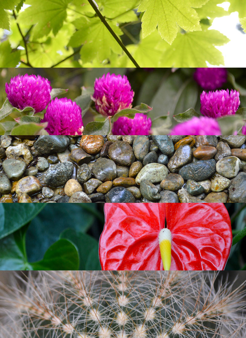 Free Nature Textures & Stock Photos