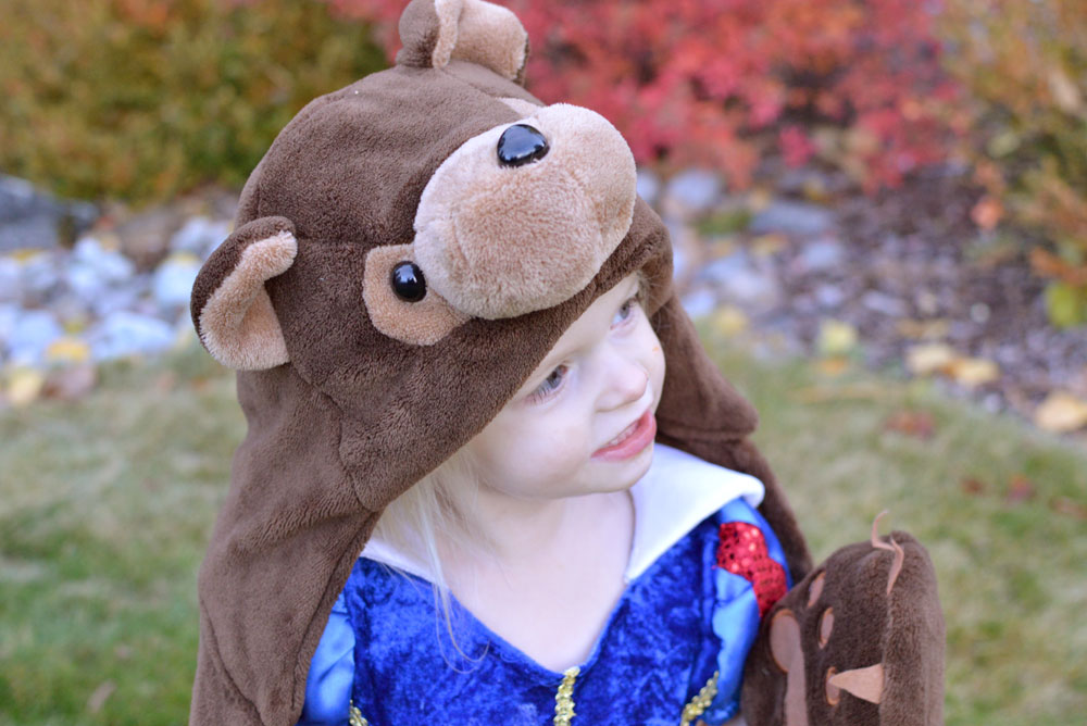 Wild Things Cozy Bear Blankets for kids