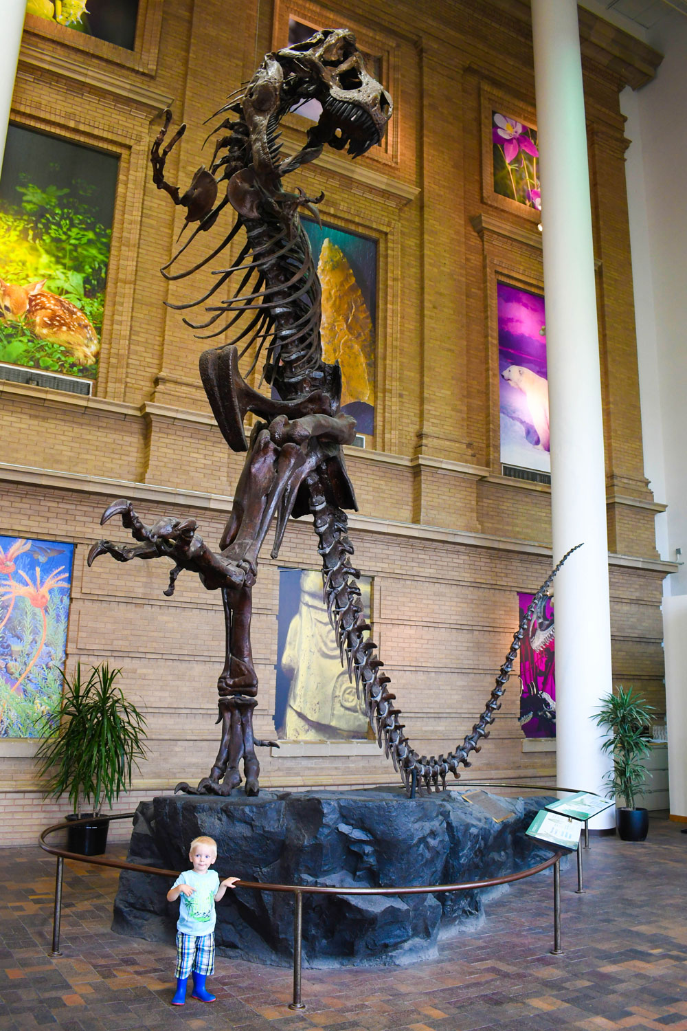 Denver Museum of Nature and Science - Top places to visit in Denver