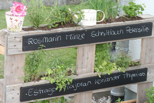 9 Creative Herb Garden Ideas