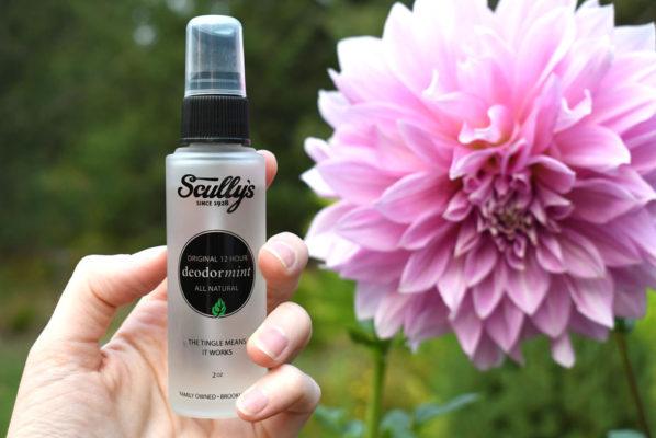 Natural Minty Deodorant Alternative