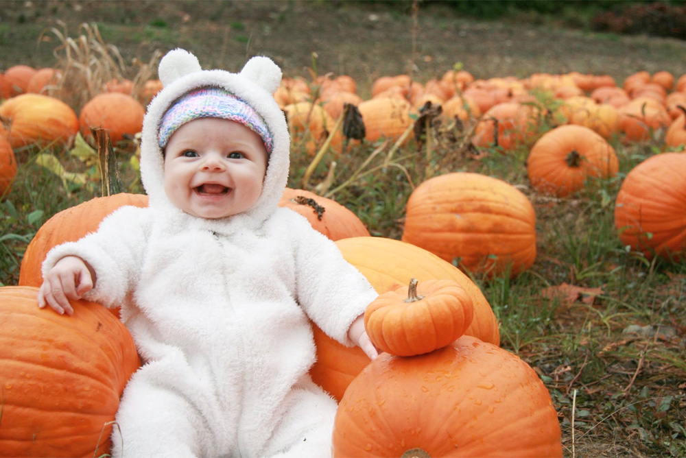 Take a Trip to the Pumpkin Patch - Baby Bear Costume