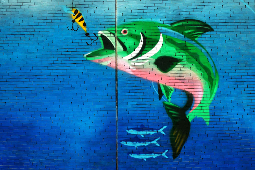 Tips for taking kids fishing - trout mural art