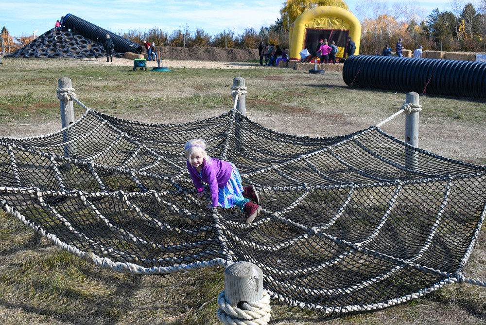 Green Bluff Becks Harvest House Climbing Spider Web - Things To Do at Your Local Pumpkin Farm