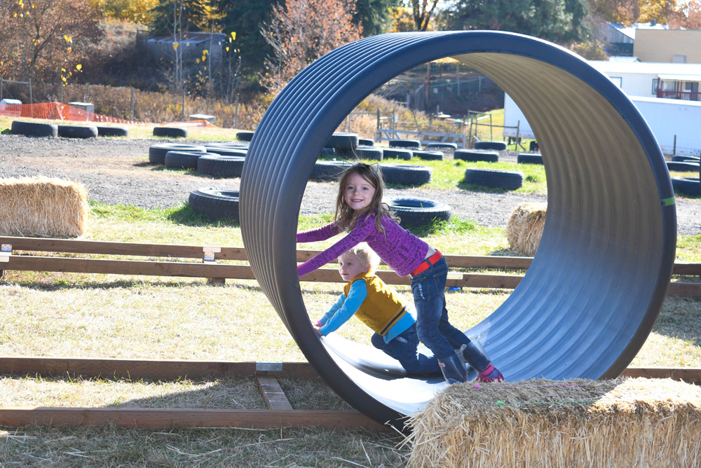 Kids Activities - Things To Do at Your Local Pumpkin Farm