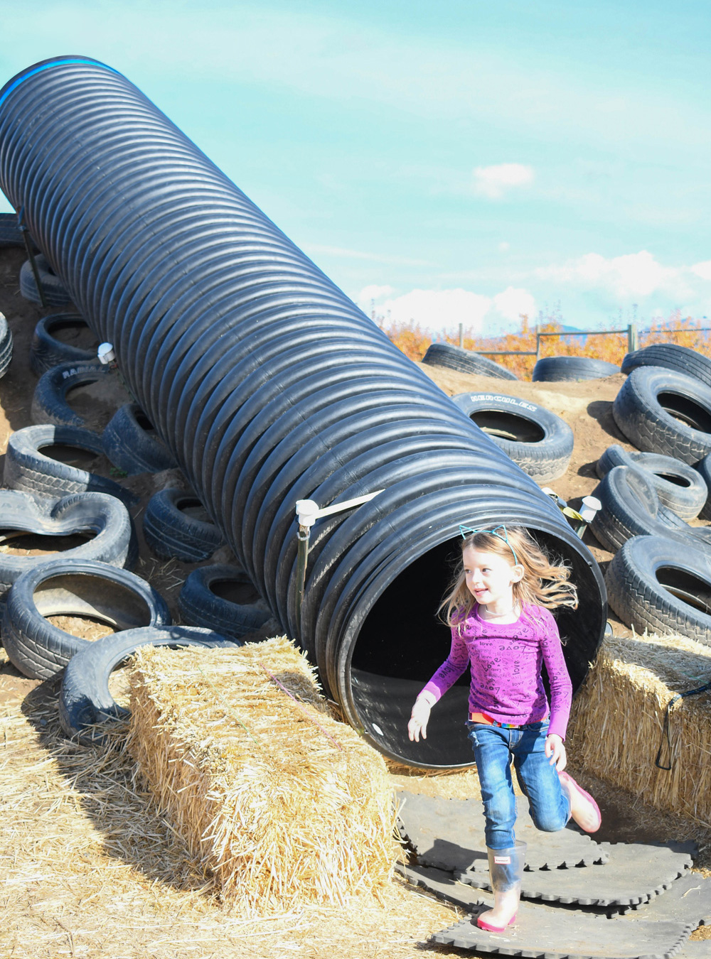 Green Bluff Becks Harvest House Tire Slide - Things To Do at Your Local Pumpkin Farm