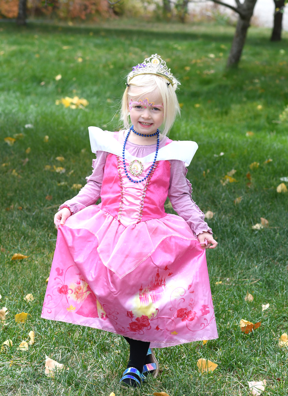 Princess Aurora costume from Fred Meyer