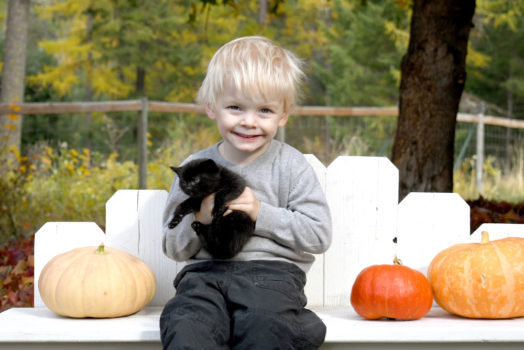 Eco-Friendly Tips for a Happy Healthy Halloween