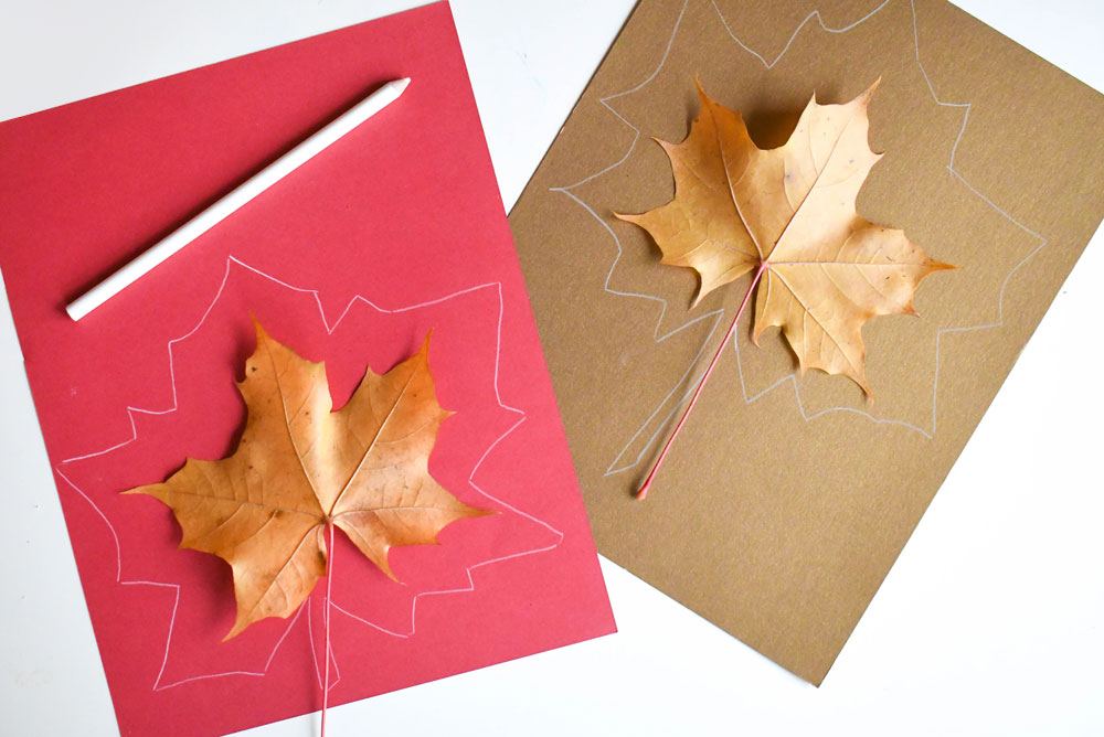 Creative tissue paper leaf sun catcher activity