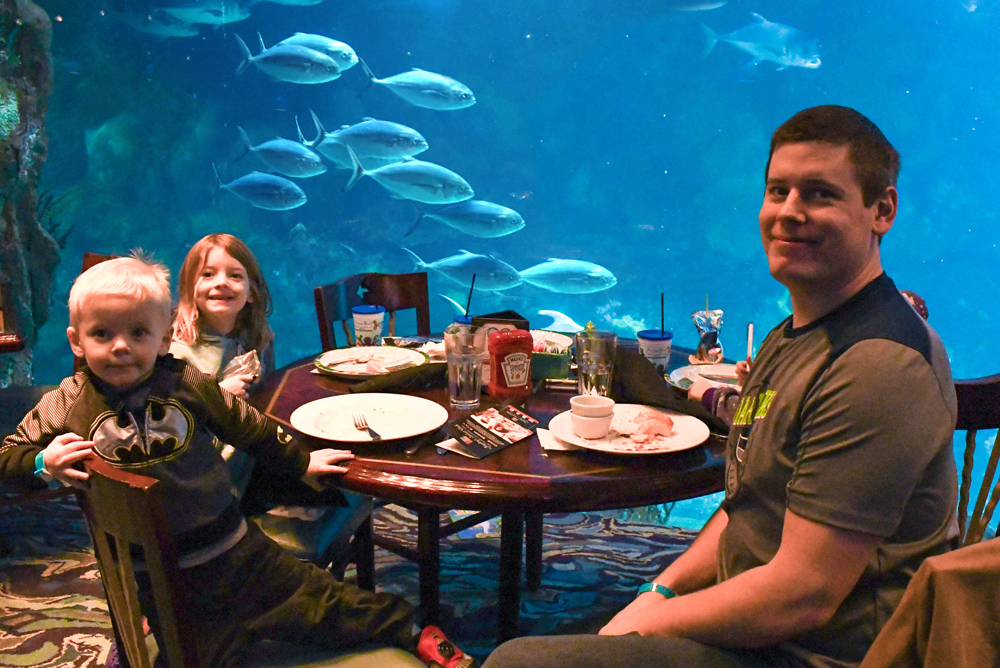 Denver Aquarium restaurant visit - Things to do with kids in Denver