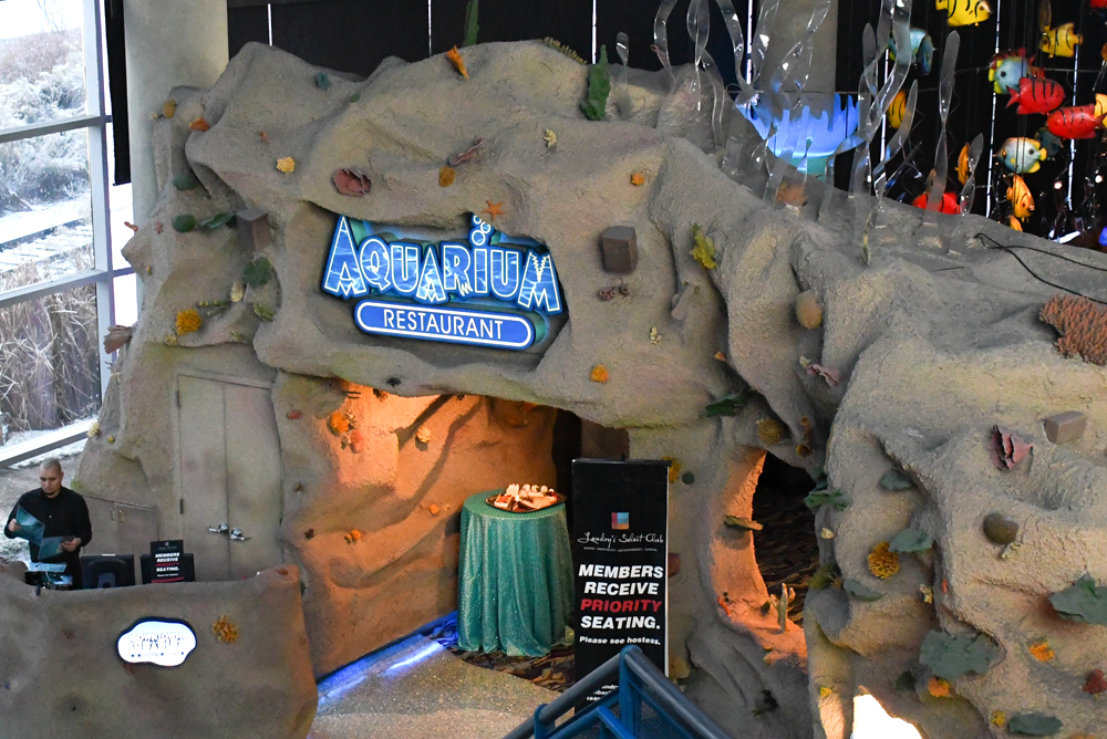 Denver Aquarium restaurant and and mermaid show