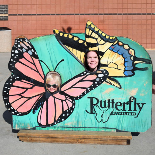 Educational Family Visit to the Denver Butterfly Pavilion