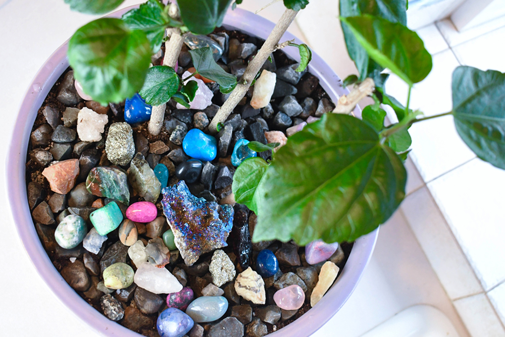 Easily spruce up your potted plants with a layer of gravel and polished gemstones