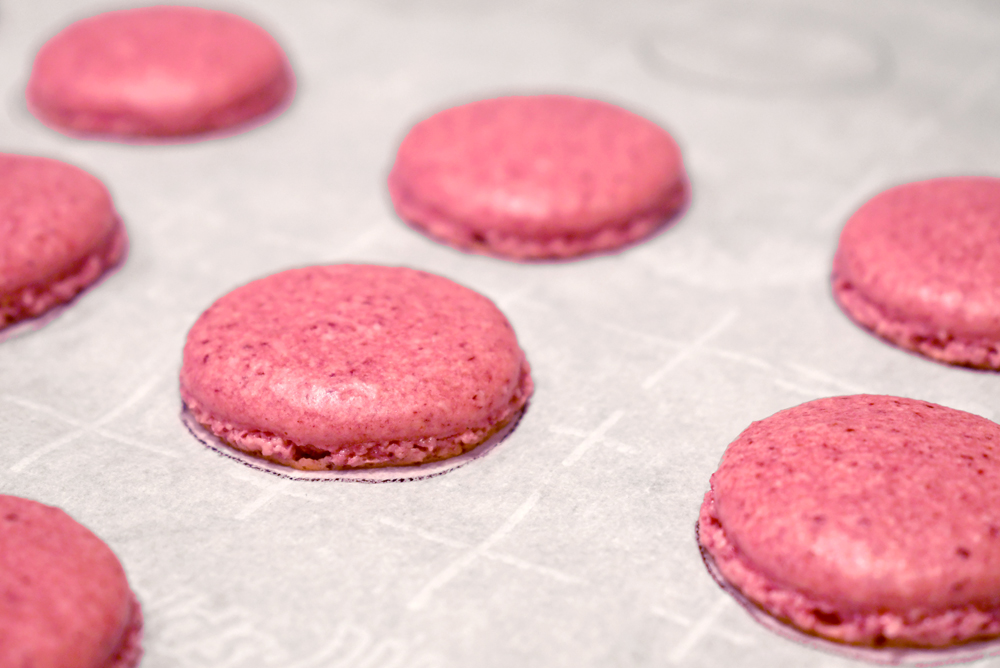 Delicious homemade freeze dried raspberry macarons