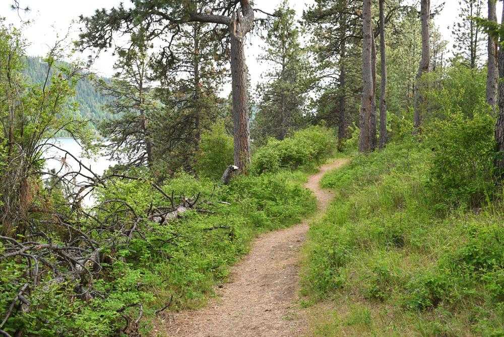 Farragut State Park hiking trails near Coeur d'Alene Idaho