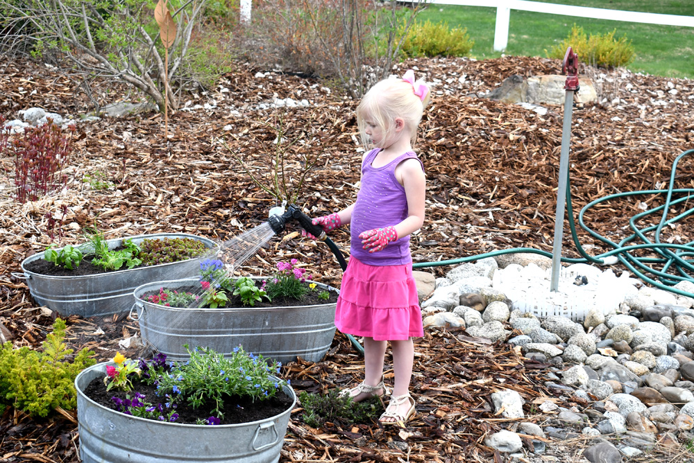 Give flowers a good start with fertilizer and daily water