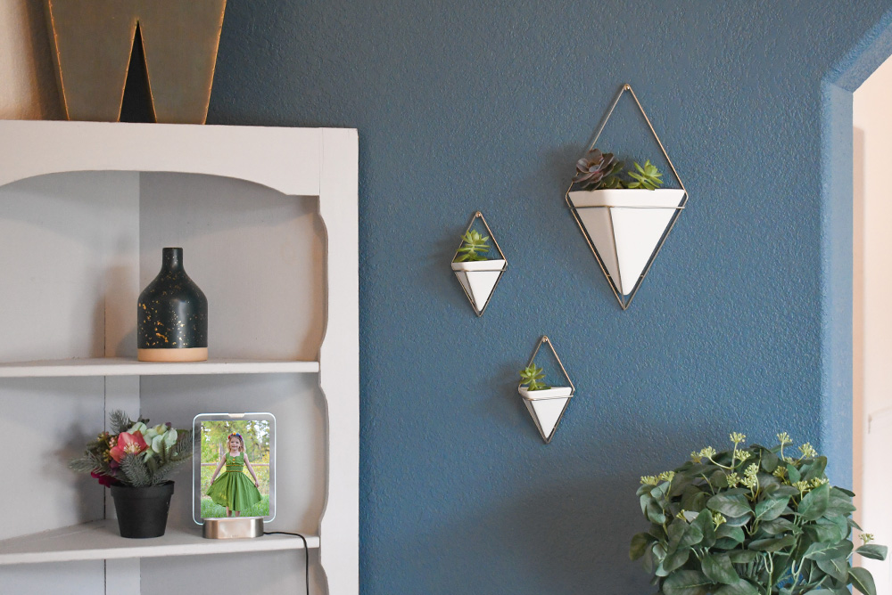 Umbra wall decor succulent planter - how to paint an accent wall