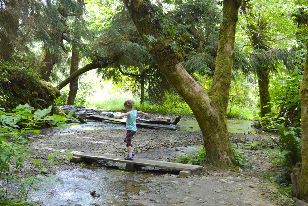 Fern Canyon California - Pacific Northwest Family Travel Destinations