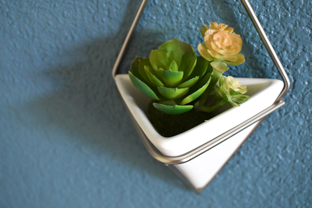 Umbra modern wall planters with succulents