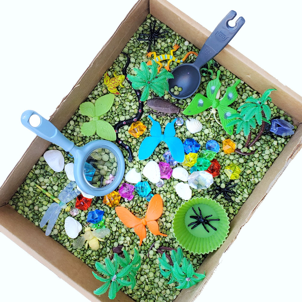 Rainforest sensory bin creative kids activity